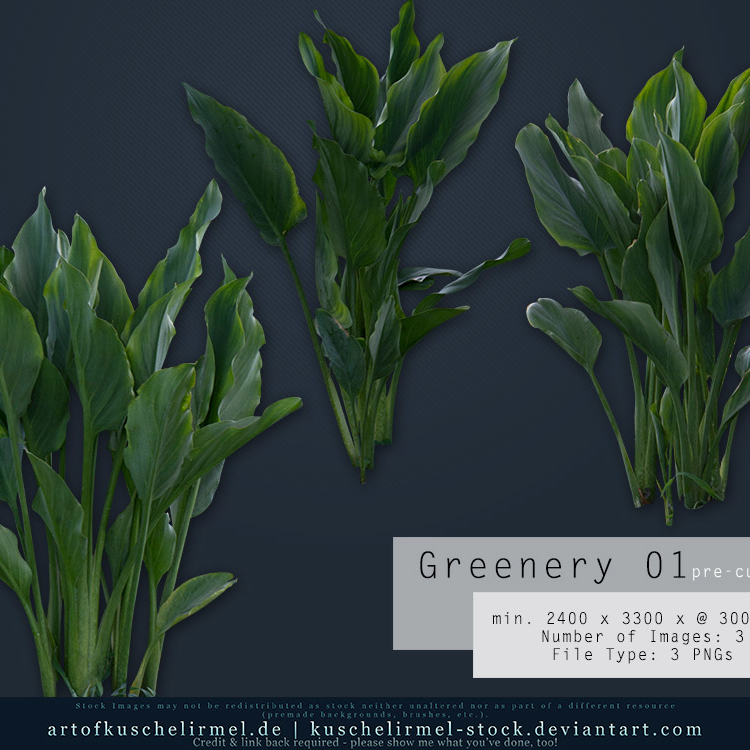 Greenery 01_cover